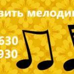 Как установить мелодию звонка на Nokia Lumia 530?