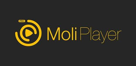 moli1 - Как подключить телефон LG к Wi-Fi роутеру?